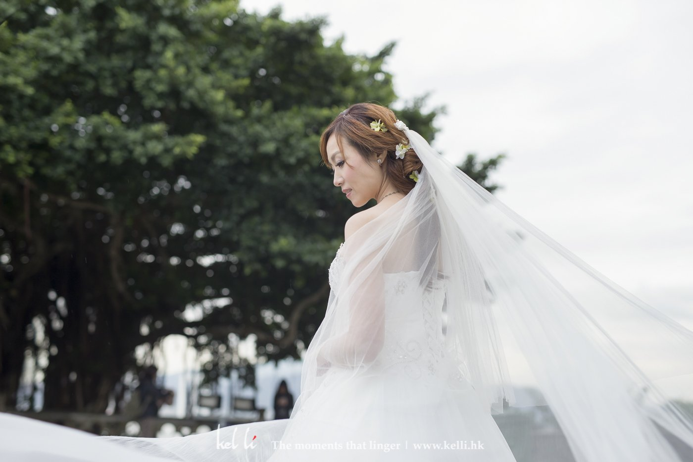 Bride in a wedding day