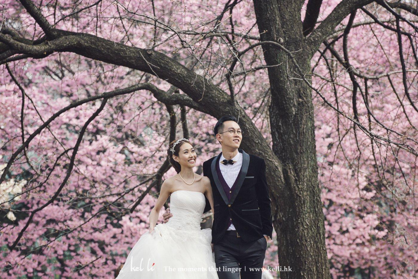 櫻花淡淡的粉紅色凝造出浪漫感覺,用來作婚紗拍攝的背景確實是不錯
