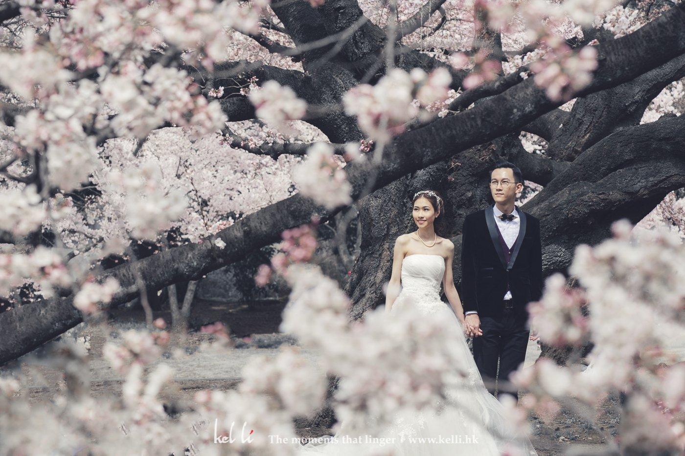 櫻花除左可以拍出浪漫感覺外也可以拍出唯美既感覺