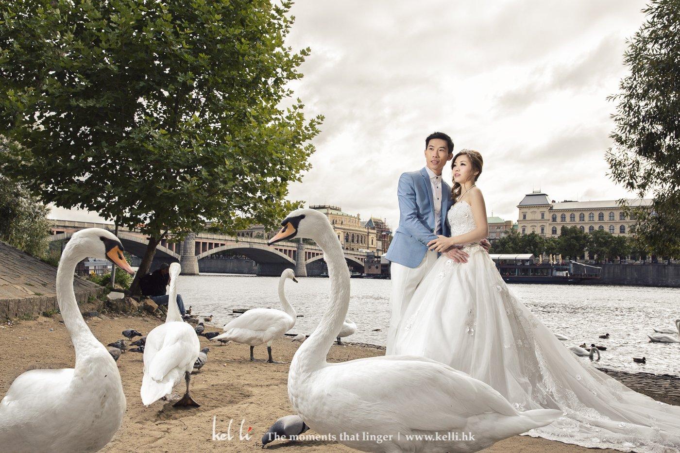 天鹅与新人是绝佳配搭,更有富有童话故事,这可算是布拉格拍婚纱照的一个特别景点