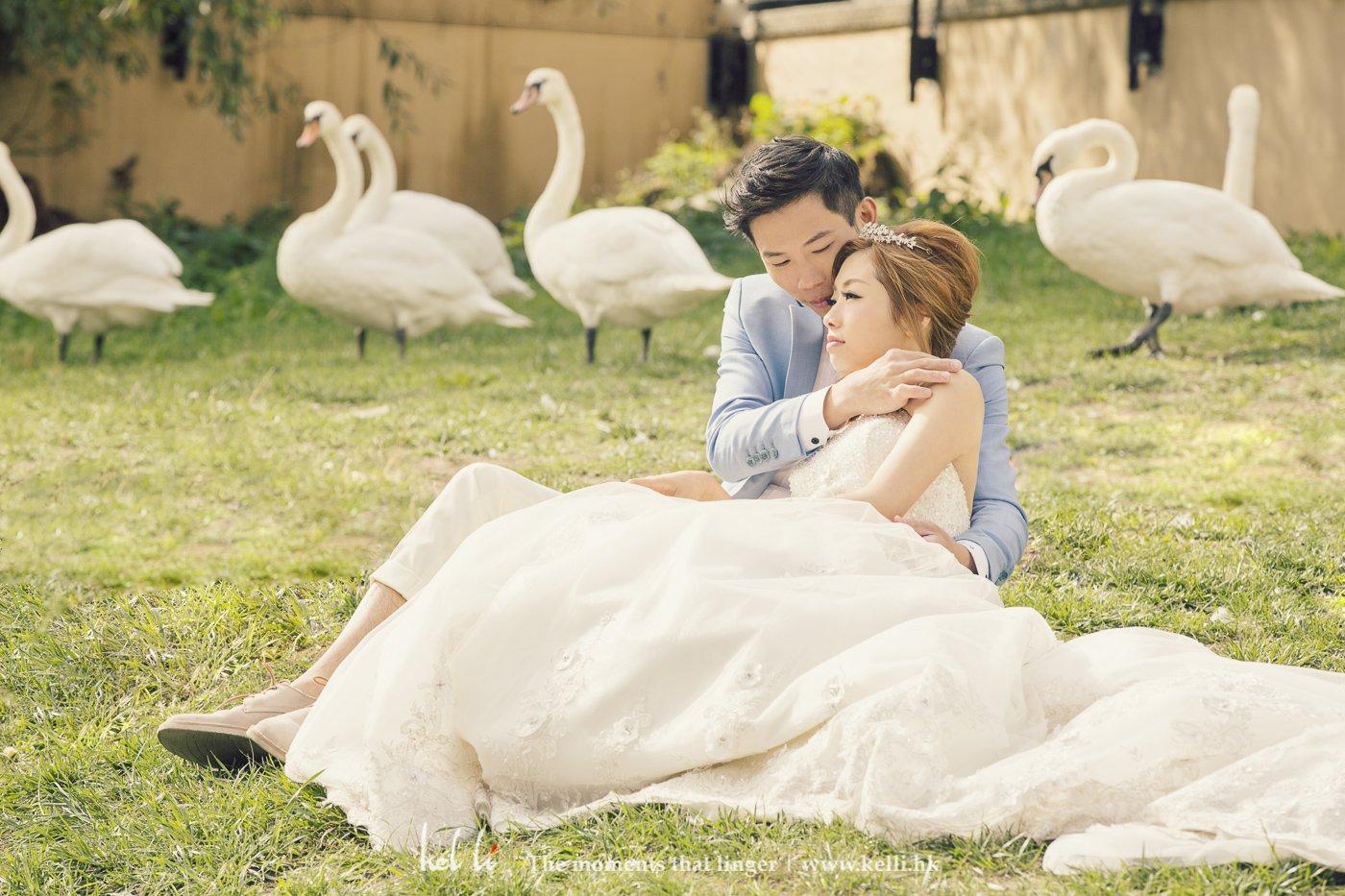 用天鹅作背景来衬托新人的婚纱相片
