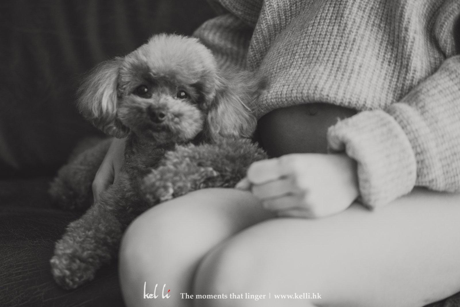 小狗無辜的表情超萌的