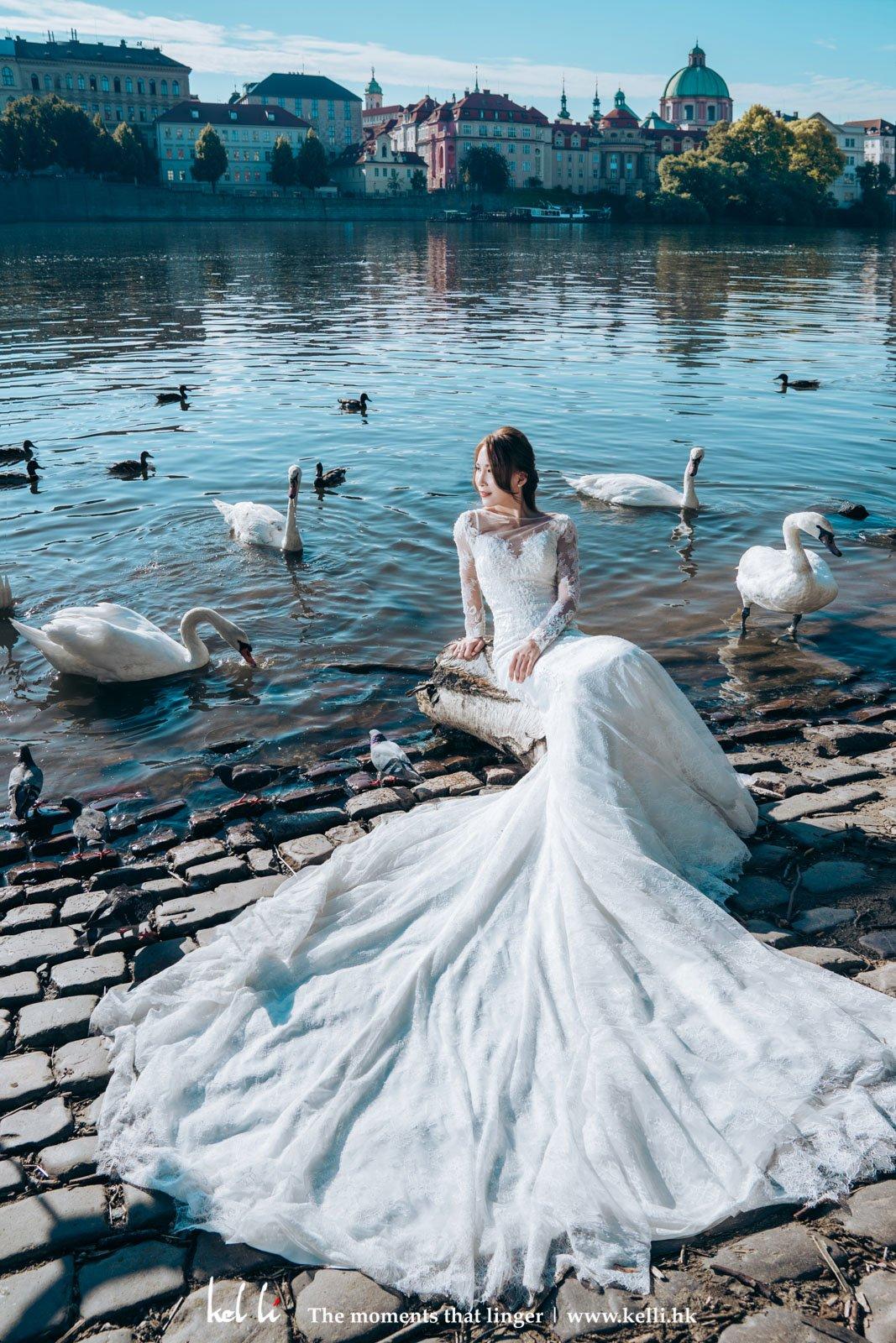 看來天鵝也為動人的新娘讓路
