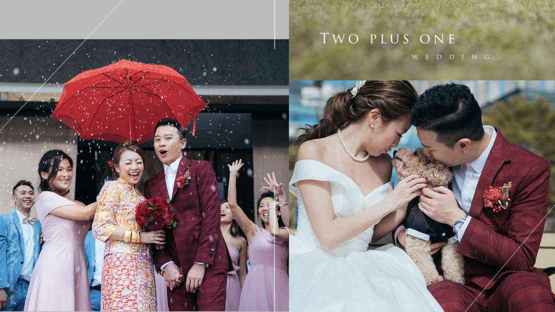 【這貳加壹的婚禮】| W Hotel Hong Kong Wedding Photo | 香港W酒店婚禮攝影